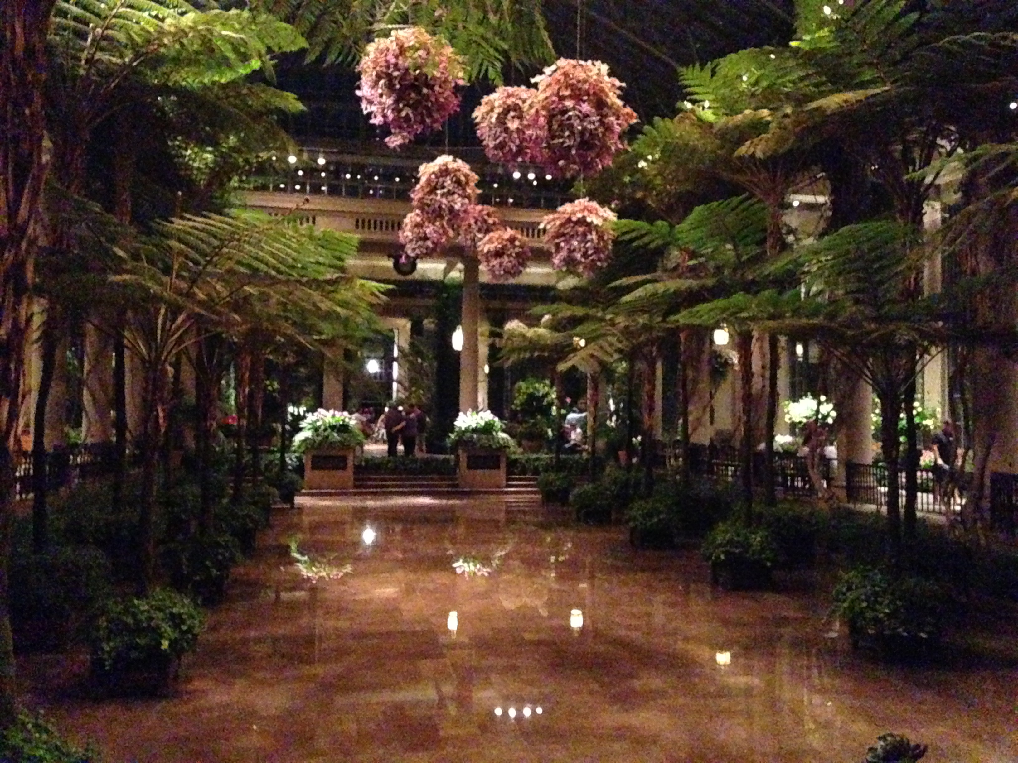 Nightscape At Longwood Gardens Ideas